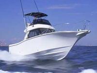 操船可能なボート